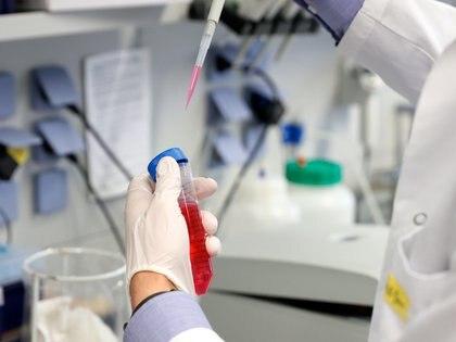 Latinoamérica tendrá enormes desafíos para acceder a tratamientos y a una vacuna contra la COVID-19 cuando esté disponible y es por ello que se debe trabajar en la colaboración científica para desarrollarla, coincidieron este martes expertas. EFE/EPA/RONALD WITTEK/Archivo