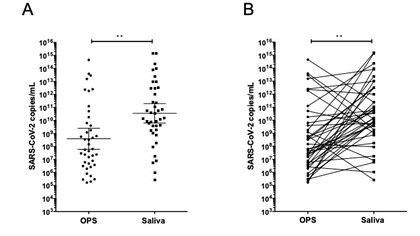 El método de los biotecnólogos en las múltiples pruebas realizadas