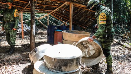 El CJNG es el principal sospechoso de los cultivos de coca encontrados en la sierra de Guerrero
