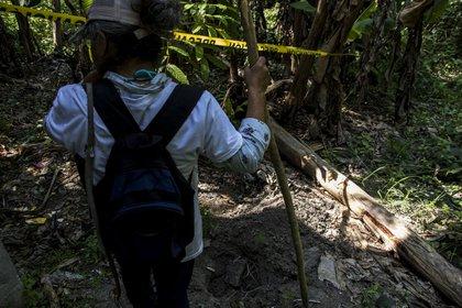 El Gobierno mexicano reportó 4,092 fosas clandestinas desde 2006 con casi la mitad en solo cinco estados: Veracruz, Tamaulipas, Guerrero, Sinaloa y Zacatecas (Foto: Adondevanlosdesaparecidos.org)
