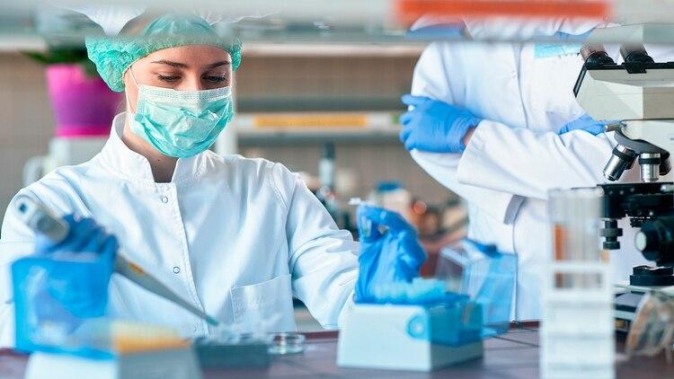 La vacuna argentina podría suministrarse en forma oral, y esto facilitaría la distribución y el proceso de vacunación (Shutterstock)