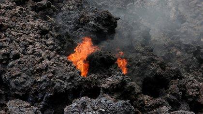 """Si fluye hacia uno de los pozos de la planta podría provocar la liberación de sulfuro de hidrógeno, un gas """"peligroso"""" (Reuters)"""