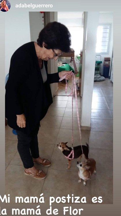 Las perritas que eran de Adabel Guerrero con su nueva familia