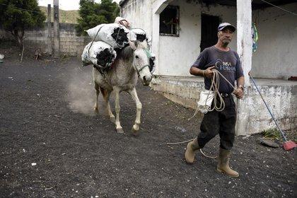 Un hombre y su caballo caminan en una calle llena de cenizas en Patrocinio (Orlando  ESTRADA / AFP)
