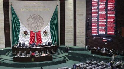 Sauri recalcó que el Estado tiene la obligación de actuar a favor de las mujeres (Foto: Cortesía Cámara de Diputados)