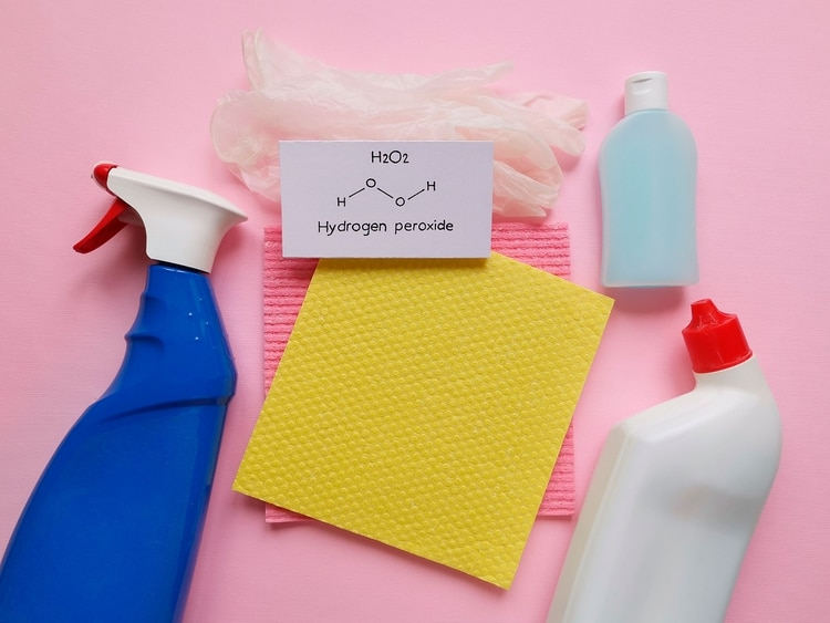 Usar el desinfectante correcto es una parte importante para prevenir y reducir la propagación de enfermedades junto con otros aspectos críticos como el lavado de manos (Shutterstock)