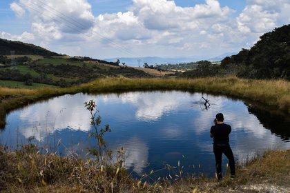 El 5 de junio se celebrará el Día Mundial del Ambiente (EFE/ Camilo García/Archivo)