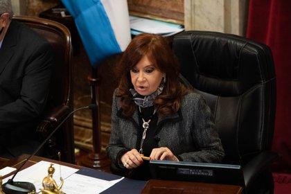 Cristina Kirchner presidirá la sesión a partir de las 14 (Franco Fafasuli)
