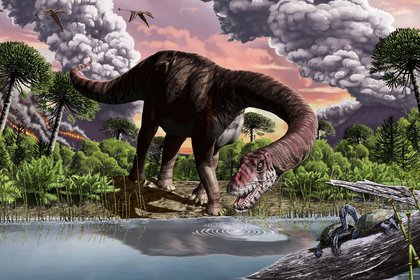 Fósiles de uno de los grandes saurópodos más antiguos, excavados en la Patagonia argentina, aportan nuevas pruebas de que un evento de calentamiento global desató la evolución de los dinosaurios gigantes (Europa Press/Sebastian Carrasco)