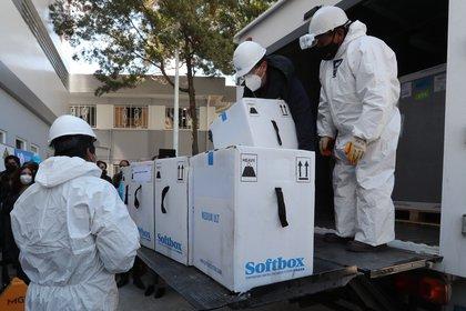 Trabajadores del Instituto Nacional de Laboratorios de Salud (Inlasa) realizan el traslado de la vacuna estadounidense Pfizer en La Paz. EFE/Martin Alipaz
