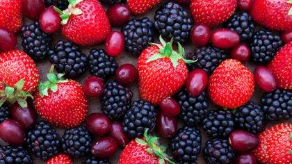 Los frutos rojos son muy recomendables, debido a sus propiedades antioxidantes (Shutterstock)