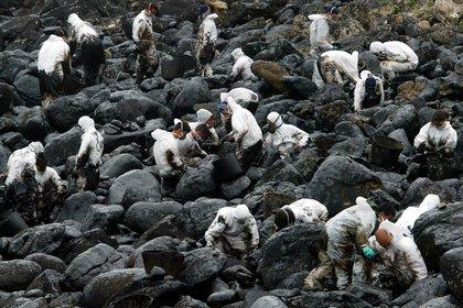 El arduo trabajo de limpiar las costas de Galicia: recién volvió la actividad pesquera tres años después