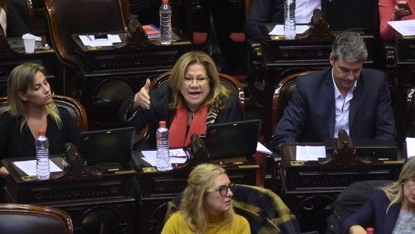 La diputada Graciela Camaño lanzó duras críticas contra la decisión del gobierno de Macri (DyN)