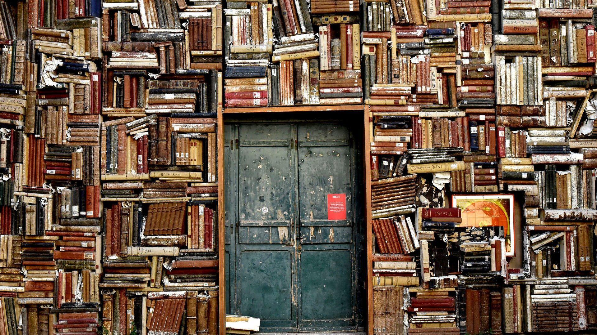 escritores libros bibliotecas