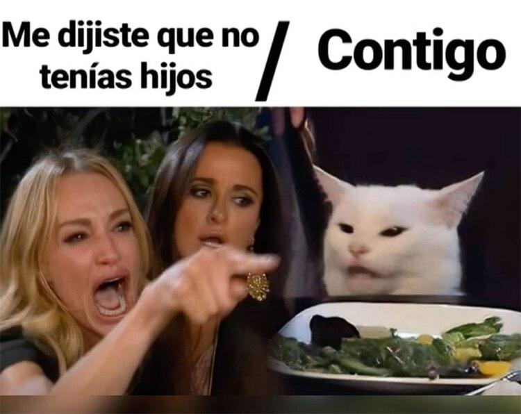 El meme del gato obtuvo el primer lugar en este ranking.