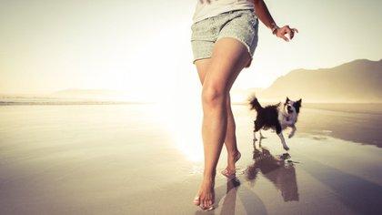 Los dueños de mascotas saben mejor que nadie que estos animalitos son parte de la familias (iStock)