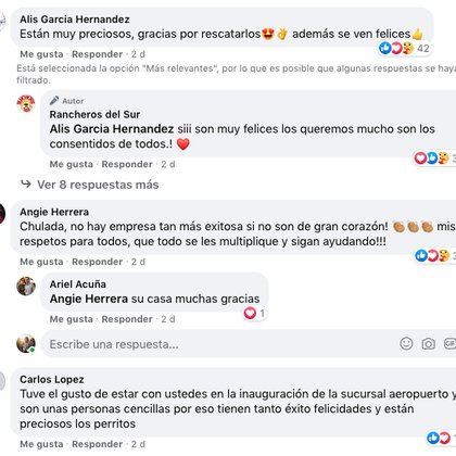 Usuarios en redes sociales se mostraron conmovidos por el rescate de los canes y externaron sus deseos de acudir a visitarlos (Foto: Facebook)