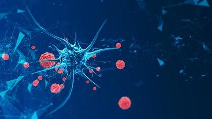 """Según el doctor Matías Chacón, sub Jefe de Oncología Clínica del Instituto Alexander Fleming (IAF), """"la pandemia por COVID-19 ha congelado los estudios preventivos en cáncer, tales como las mamografías, papanicolau y fibrocolonoscopías"""" (Shutterstock)"""