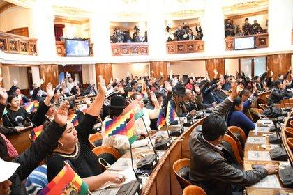 Varios diputados y senadores bolivianos condenaron los dichos de Evo Morales (@Diputados_Bol)