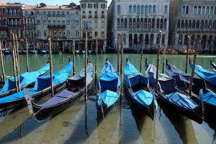 Los habitantes de Venecia reportaron que las aguas de los canales se encuentran cada vez más claras   REUTERS/Manuel Silvestri