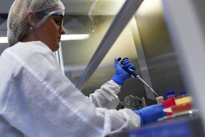 Una investigadora del Instituto de Biología de la Universidad Federal de Río de Janeiro (UFRJ) trabaja en un proyecto por el coronavirus el 25 de marzo de 2020 (REUTERS/Lucas Landau)