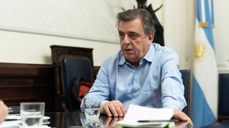 Mario Negri (Adrián Escandar)