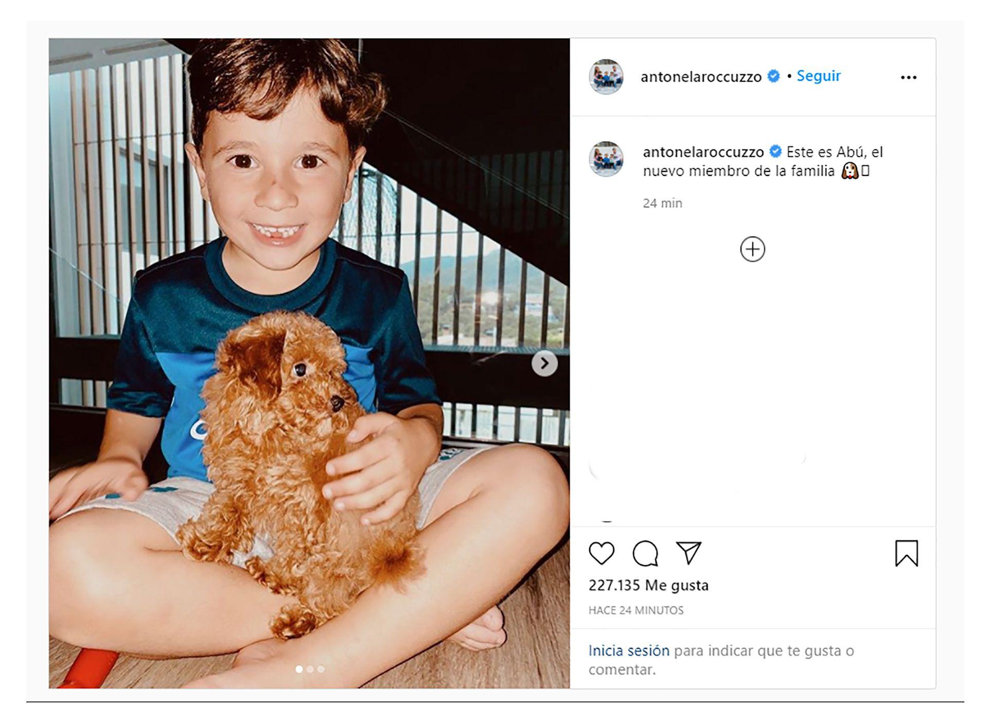 nuevo perro de la familia Messi