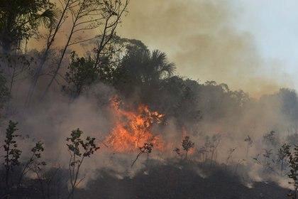Los incendios forestales en el Amazonas han causado preocupación en Europa (Reuters/ Lucas Landau)
