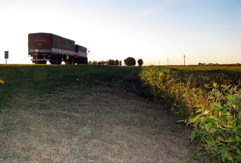 Ayer se acordó un nuevo cuadro tarifario para el transporte de granos (REUTERS/Nicolas Misculin)