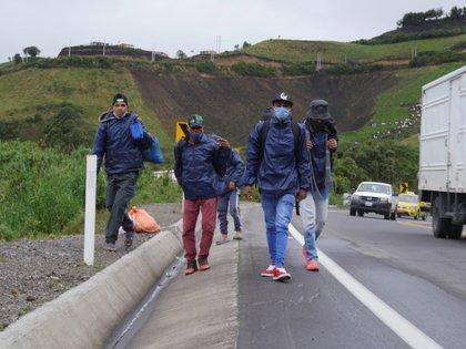 Migrantes venezolanos caminan por una carretera, en la región de Tulcán, en Ecuador (EFE/Xavier Montalvo)