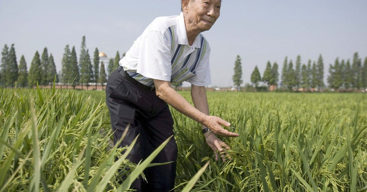 Chinese scientist Yuan Longping, the