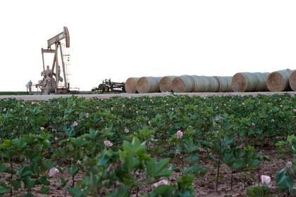 Imagen de archivo de una bomba petrolera cerca de Midland, Texas, EEUU. 21 agosto 2019. REUTERS/Jessica Lutz