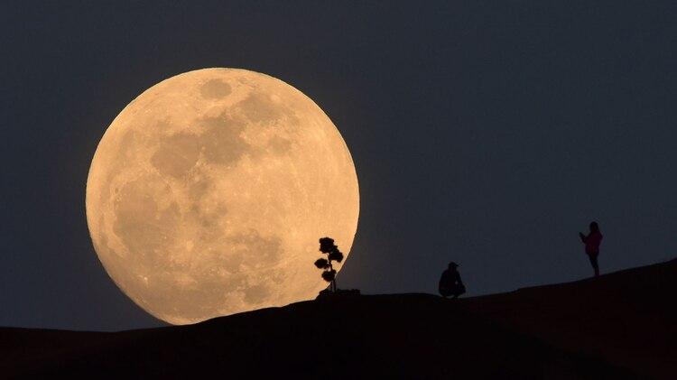 (Foto: Robyn Beck /AFP)