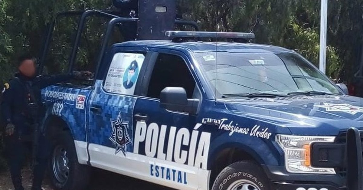Violent day in Zacatecas: 12 people were murdered in less than 24 hours in different parts of the state