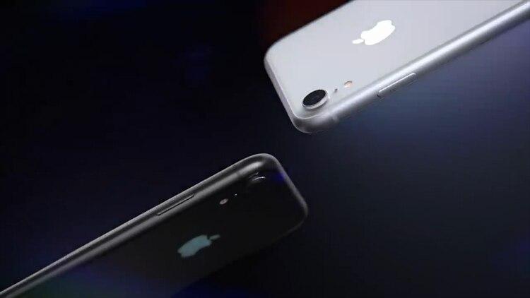20d2584d99c Tim Cook, el CEO de Apple comenzó el año 2019 con una carta desalentadora  para sus inversores: la compañía redujo sus expectativas de ventas para el  primer ...