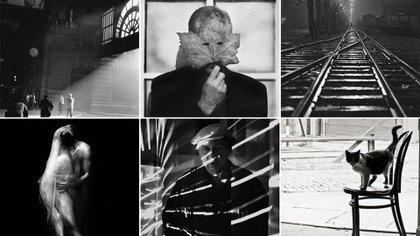 Sessa donó -hasta el momento- 62 fotografías al Museo Moderno