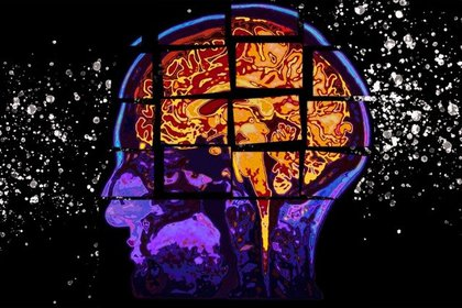 """""""El glioblastoma es el tipo de cáncer más letal en el sistema nervioso central y es responsable de la mayoría de los tumores cerebrales malignos"""""""