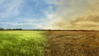El drástico cambio de clima insta a acelerar una transición hacia una sociedad con bajas emisiones de carbono (Getty Images)