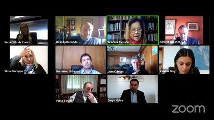 La reunión virtual de la Comisión de Selección del Consejo