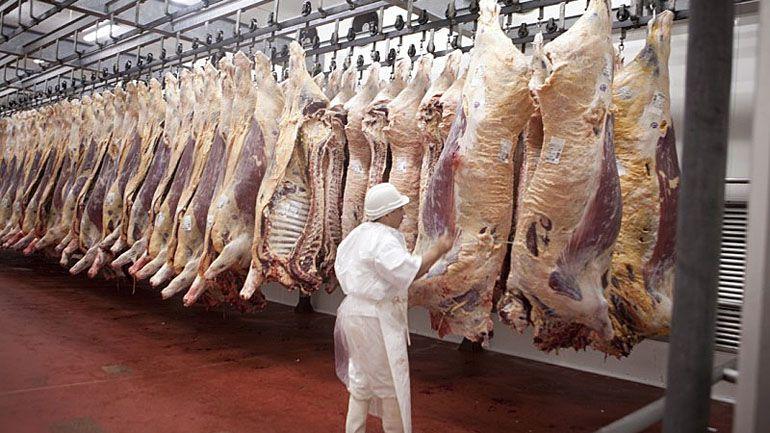 Las exportaciones de carne vacuna podrían superar este año a las 900 mil toneladas