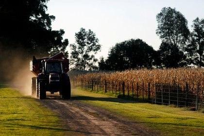 El campo, el gran productor de exportaciones, podría producir mucho más si le aliviaran los derechos de exportación y demás trabas (Reuters)