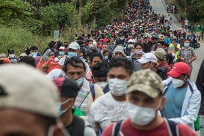 Un grupo de migrantes hondureños camina rumbo a Estados Unidos. EFE/Esteban Biba/Archivo