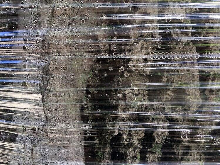 Las gotas de agua se forman a lo largo de los pliegues en celofán
