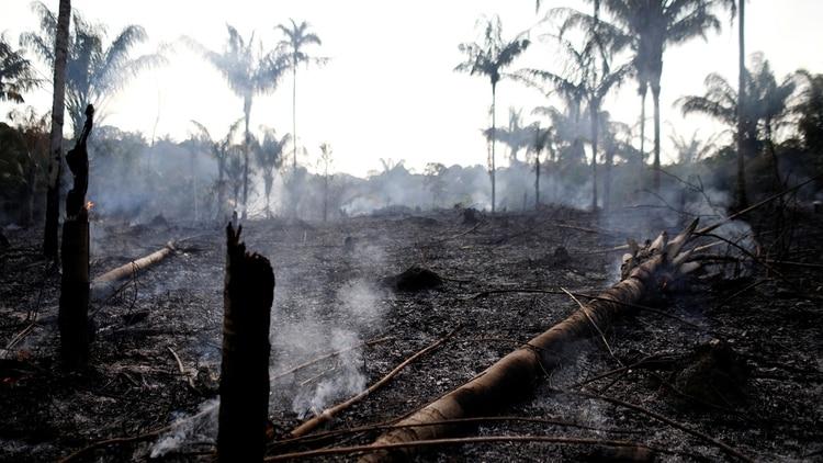 En Ecuador llaman a protestas para que Brasil detenga los incendios en la Amazonía