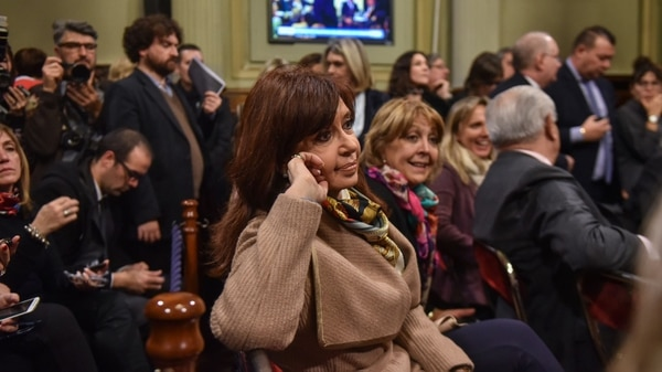 Cristina Kirchner en el Senado (Guille Llamos)
