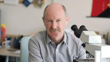 El español Rafael Yuste es uno de los neurocientíficos más influyentes del mundo y especialista en el estudio del cerebro (Foto: YusteLab de la Columbia University)