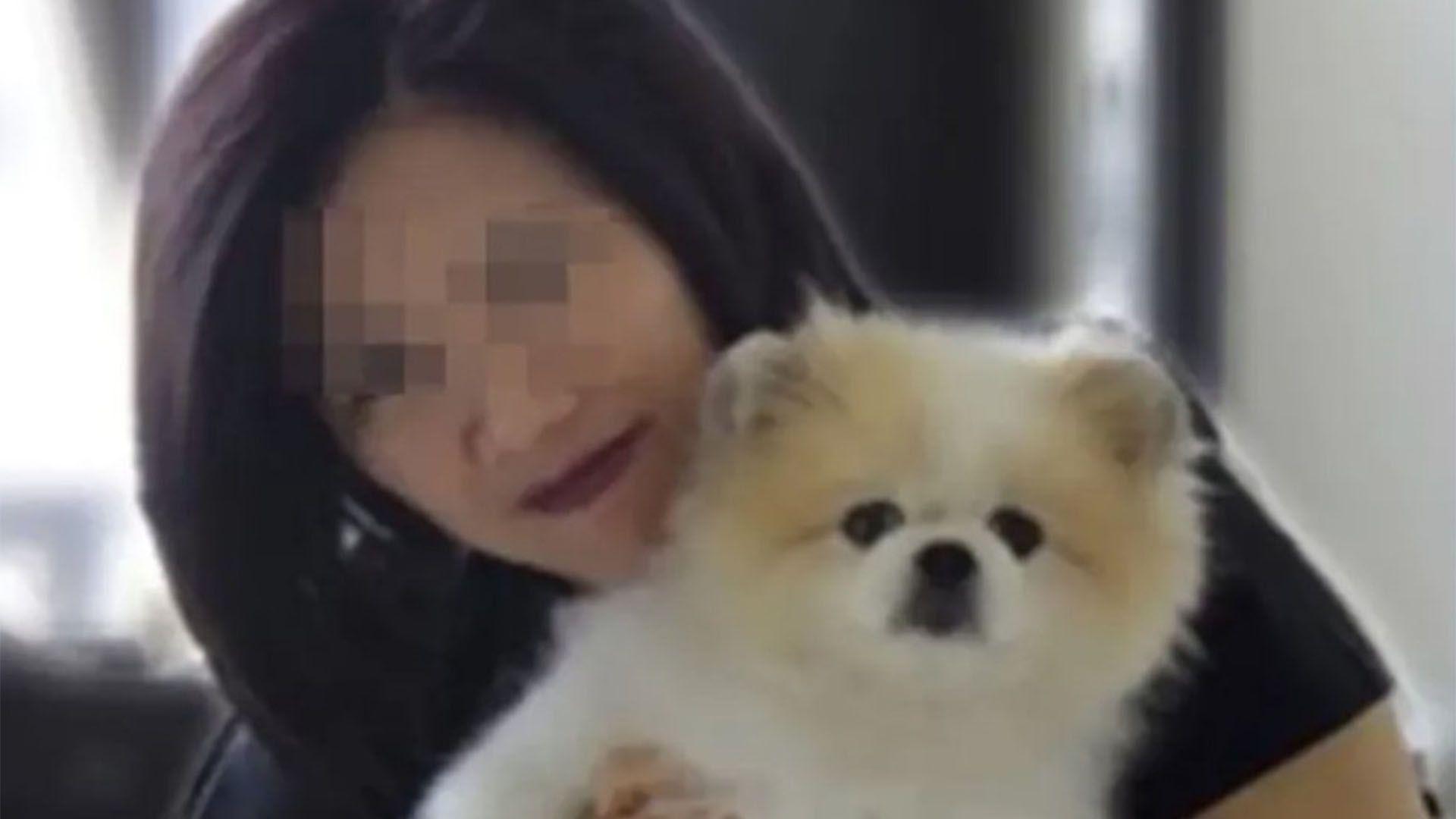Murió en Hong Kong el perro que había dado positivo por coronavirus.