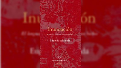 """""""Inundación"""", de Eugenia Almeida"""