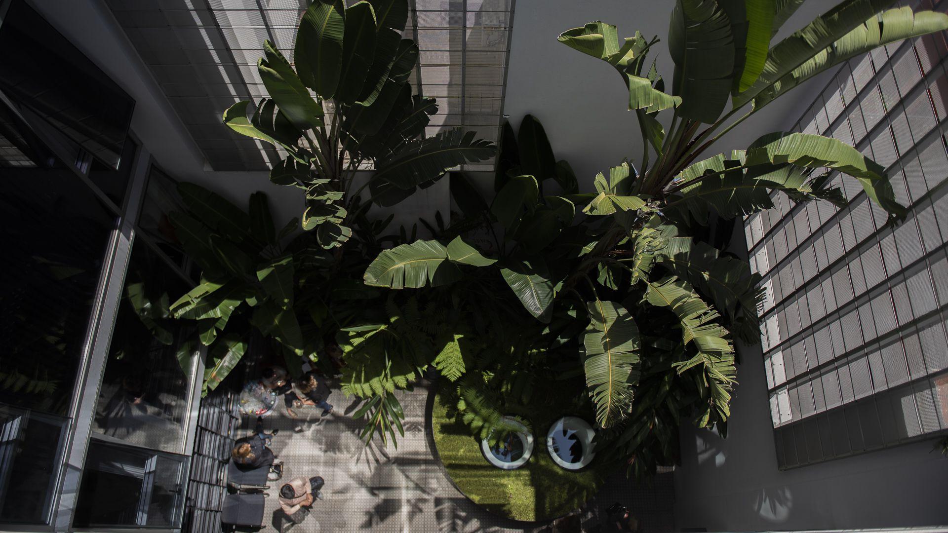 Las plantas permitieron el programa y el código, agrupando servicios, reduciendo circulaciones y trabajando con el diseño estructural (Adrián Escandar)