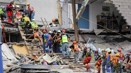 Una línea de ayuda formada por rescatistas y ciudadanos en general en un edificio de la capital, la semana posterior al terremoto del 19 de septiembre de 2017 (Foto: Galo Cañas/ Cuartoscuro)